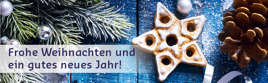 Website_Header_Weihnachten_900x280px_D_FINAL.jpg